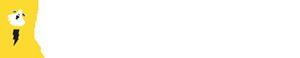 Bolt Consult Logo